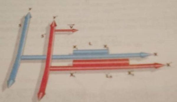 Albert Einstein Relatividad de las posiciones