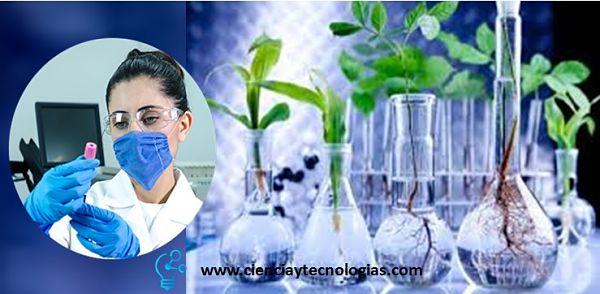 Biotecnología Método en Plantas