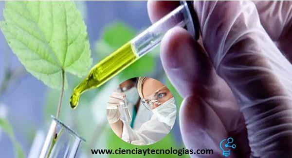 Ejemplos de la Biotecnología