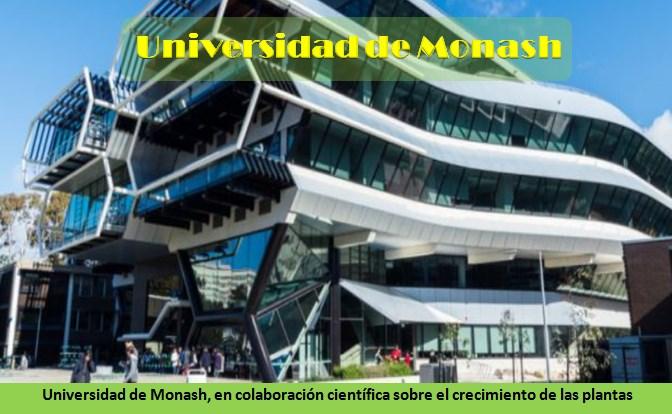 Universidad de Monash (Australia)