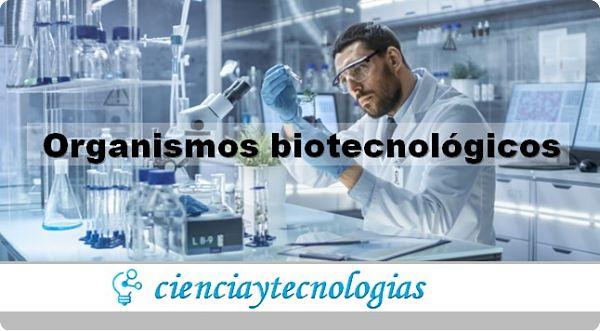 Plataforma para trabajar con Organismos Biotecnológicos