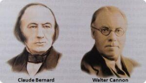 Claude Bernard y Walter Cannon