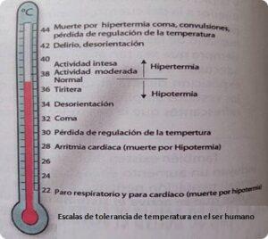Escala de tolerancia de temperatura en los humanos
