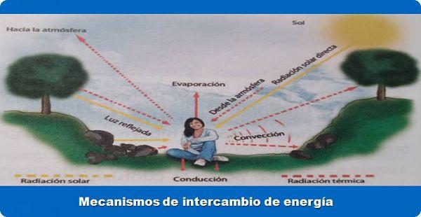 cómo regular la temperatura con mecanismos de intercambio de energía